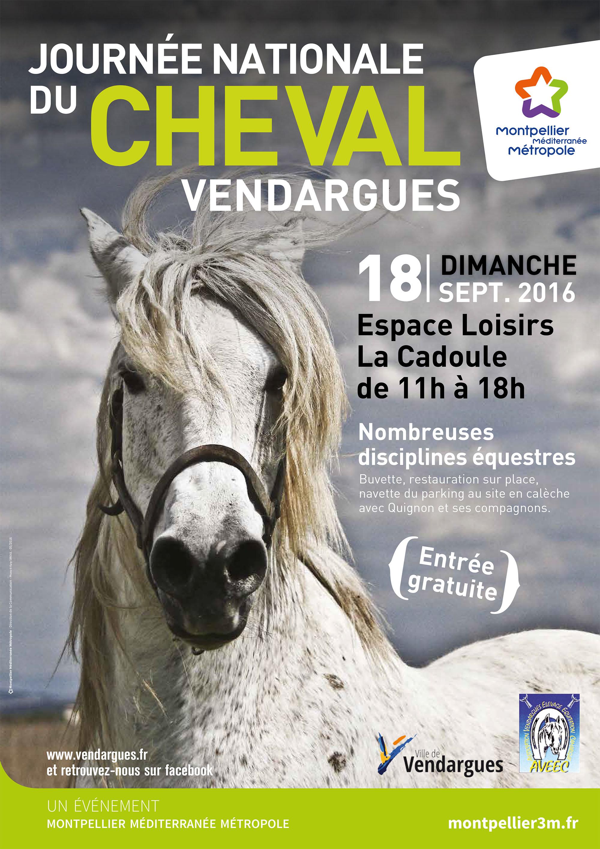 F te du cheval 2016 montpellier m diterran e m tropole - Salon du cheval montpellier ...