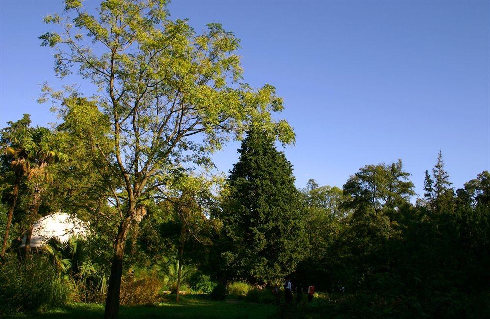 jardin de la reine