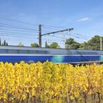 Interruption des trains autour de Montpellier du 25 mai au 28 mai 2017