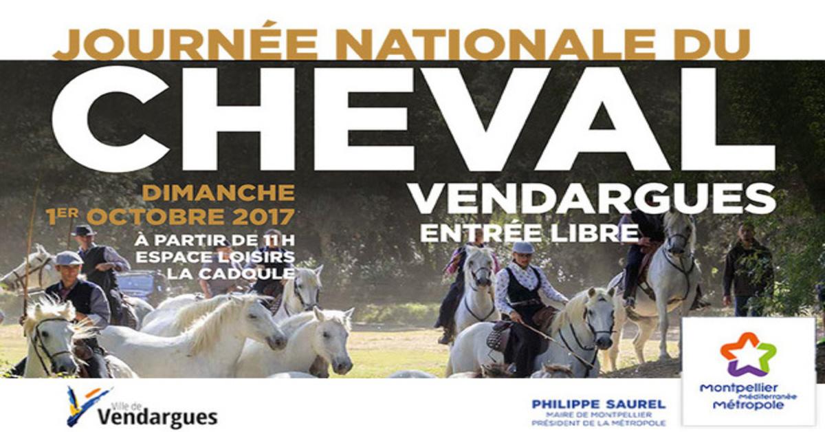 Journee Nationale Du Cheval Montpellier Mediterranee Metropole