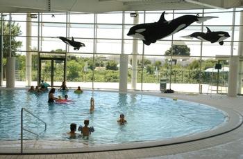 montpellier mediterranee metropole With awesome piscine amphitrite saint jean de vedas 0 piscine amphitrite montpellier mediterranee metropole