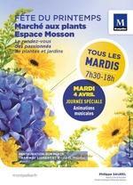 Affiche de la fête du printemps, fleurs jaunes et bleues