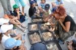 Site Archéologique Lattara : des ateliers pour les apprentis archéologues