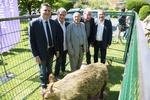 Fédération départementale des chasseurs de l'Hérault