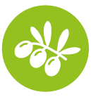 Découverte des jardins partagés et de la permaculture